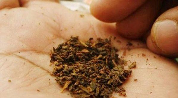 بريتش أمريكان توباكو BAT تعمل على تصنيع مصل محتمل لفيروس كورونا من التبغ